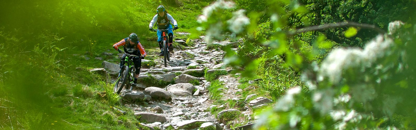 lake-district-mtb-routes-loughrigg